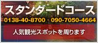 スタンダードコース 人気観光スポットを周ります 21,800円~