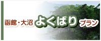 函館・大沼よくばりプラン